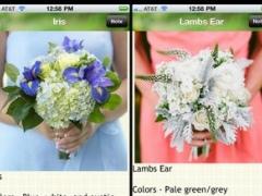 120 Wedding Flower List 3.0 Screenshot