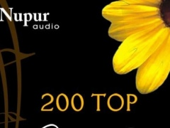 200 Top Bollywood Instrumental 1.0.0.1 Screenshot