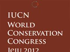 2012 WCC 1.0.1 Screenshot