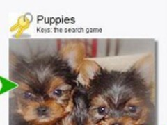 300+ Puppies Lite (Keys) 5.0 Screenshot