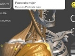 3D Anatomy for the Artist 1.0.2 Screenshot