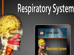 3D Respiratory System 1.0 Screenshot