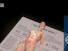Anatomy 4D 2.0.1.110 Screenshot