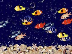 5D Aquarium live wallpaper 1.01 Screenshot
