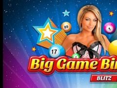 A Big Game Bingo Blitz - Lucky Play Casino Vegas Games 2.0 Screenshot