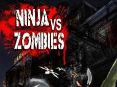 A Bike Ninja vs. Zombies - Multiplayer Racing Edition 1.0 Screenshot