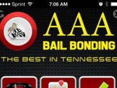 AAA Bail Bonding 1.0 Screenshot