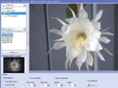 Able RAWer 1.10 Screenshot