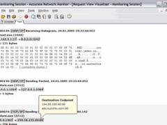 Accurate Network Monitor 1.31 Screenshot