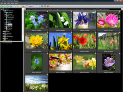 ACDSee Picture Frame Manager 1.0.77.0 Screenshot