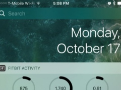 Activity Widget for Fitbit 1.0 Screenshot