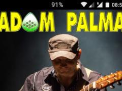 Adam Palma - Guitar Lessons 1.0 Screenshot