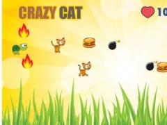 Addictive Cat Games - Kittens Adventures Free 1.0.1 Screenshot