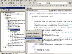 ADO.NET Express Pro 1.2.0 Screenshot