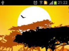 Africa sunset live wallpaper 1.0.1 Screenshot