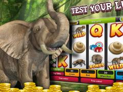 African Para-Dice Slots Safari 1.0 Screenshot