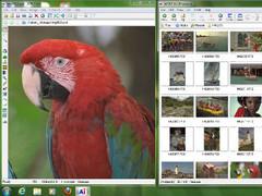 Ai Picture Utility 8.9 Screenshot