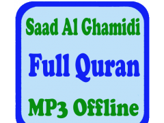 Al Ghamidi Full Quran Offline 1 4 Free Download