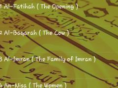 Al-Quran Mahmoud K Al-Hussary 1.0 Screenshot