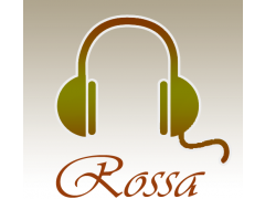 All Songs Rossa 1.0 Screenshot