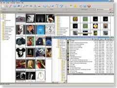 AMC Graphic Workshop Pro 8.0a Screenshot