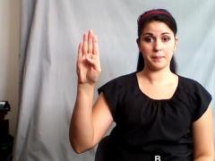 American Sign Language Guide 1.0 Screenshot