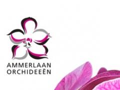 Ammerlaan Orchids 2.0.2 Screenshot