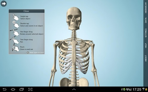 Anatomy 3D - Anatronica 2.06 Free Download