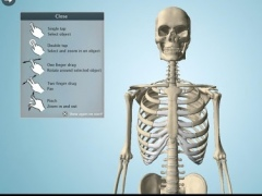 Anatomy 3D - Anatronica 2.06 Screenshot