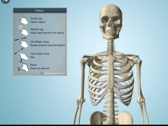 Anatomy 3D Pro - Anatronica 2.07 Screenshot