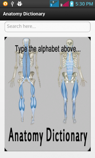 Anatomy Dictionary 004 Free Download