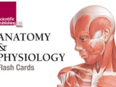 Anatomy & Physiology Flash Cards 1.1 Screenshot