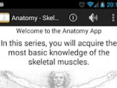 Anatomy - Skeletal Muscles 1.8 Screenshot
