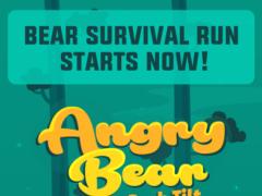 Angry Bear - Jump, Dash, Tilt 1.0 Screenshot