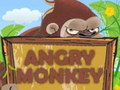 Angry Monkey 3.4.3 Screenshot