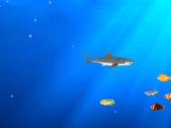 Angry Shark Adventure 3D 1.1 Screenshot
