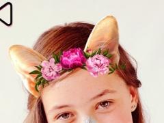 Animal Face Maker Pro: Snap Photo Editor Stickers 1.0 Screenshot