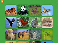 Animal Match Memory training 2.1.0 Screenshot