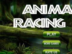 Animal Race 3D 2016 1.2 Screenshot
