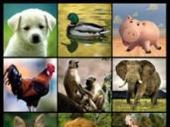 Animal Sounds & Ringtones 3.1 Screenshot