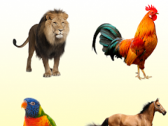 Animal Sounds.Animals for Kids.Learn Animals 5.0.3 Screenshot