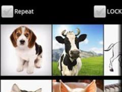 Animal Sounds For Babies No Ad 1.01 Screenshot