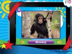 Animal Sounds HD 1.01 Screenshot