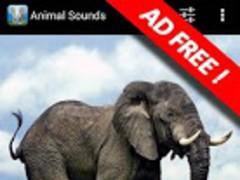Animal Sounds Premium 1.0 Screenshot
