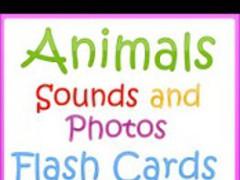 Animal Sounds with Photos 4.0 Screenshot