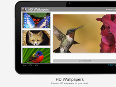 Animals HD Wallpapers #3 2.0 Screenshot