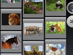 animals slide sounds 1.5 Screenshot