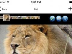 Animals Zone 1.1 Screenshot