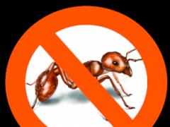 Ants Repellent 1.1 Screenshot