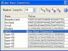 Any Base Converter 1.0 Screenshot